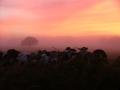 Cowboy - Baia della Luna - Western Australia - www.winki.it