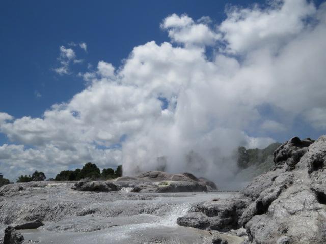 Ritorno ad Aotearoa – Nuova Zelanda – II^ parte