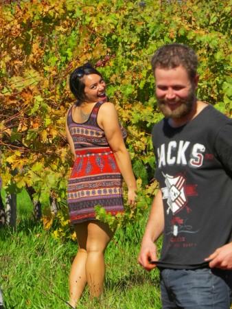 Australia wine tours-www.winki.it