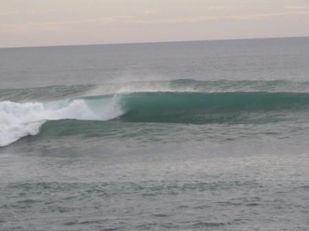 surf-zuova-zelanda-piha-www.winki.it
