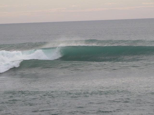 Surf and zen ad Aotearoa – Nuova Zelanda