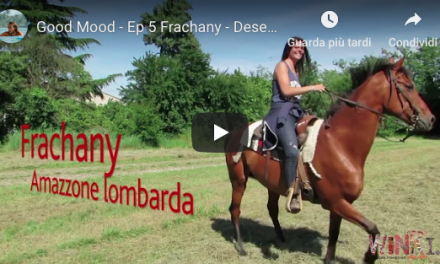 Desert – Good Mood – nr 5 con Frachany