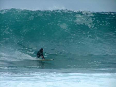 surf-austrlia-libro