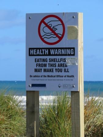 Vietato mangiare mollusci non sarà per caso a causa delle vicine raffinerie?