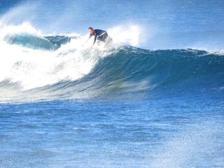 Così mi diverto a giocare tra le onde e i delfini